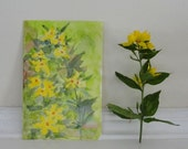 Botanical Art, Watercolor Painting, Yellow Spring Flower Art, Yellow Loosestrife, Original Art, For Mom, Mother's Day