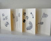 Fall and Autumn Theme Greeting Cards,  Acorns, Teasel, Woolly Bear Caterpillars, Ink Drawings, All Occasion Blank Cards Set of 4