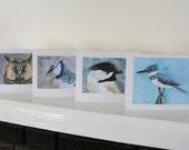Bird Art Blank Cards Blue Gray Grey Birds Owl Kingfisher Chickadee Blue Jay Cards Set of 4