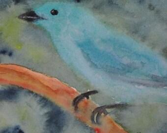 Original Bird Watercolor Painting, Indigo Bunting, Blue Bird Art Painting, Watercolor Bird Painting, Home Decor, 5 x 7