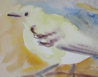 Watercolor Yellow Song Bird Original Painting