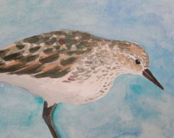 Watercolor Painting Bird Art Sandpiper Original Shore Bird Shorebird Nature Painting 2