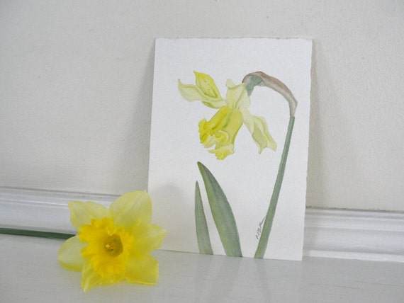 Botanical Watercolor Painting, Flower Art, Yellow Daffodil Flowers, Yellow and Green Garden Art, Home Decor