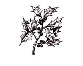 HOLLY BRANCH unmounted rubber stamp No.19