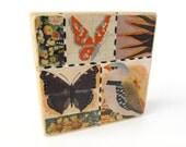 Butterflies 'n Bird - ART BLOCK - Original Mixed Media Collage