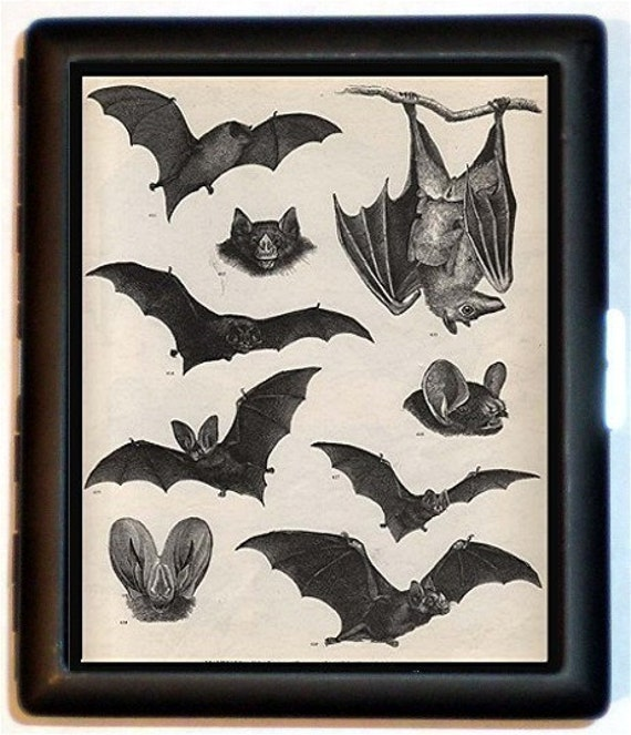 Bat Victorian Cigarette Case Bats Vampire Animal Biology Art Ernst Haeckel Vampires Goth Dracula ID Business Card Credit Card Holder Wallet