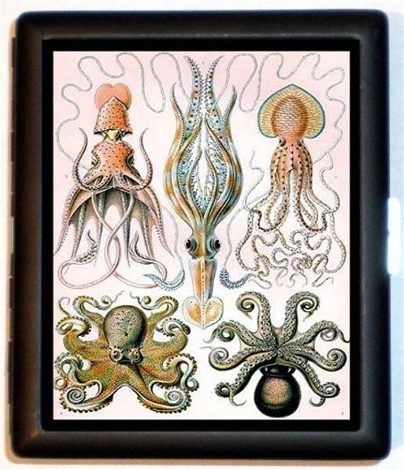 Octopus Squid Jellyfish Anatomy Chart Cigarette Case Wallet Business Card Holder