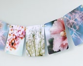 Littleput Vignette- Spring Thing.  A string of photographs for your wall in gorgeous pastels