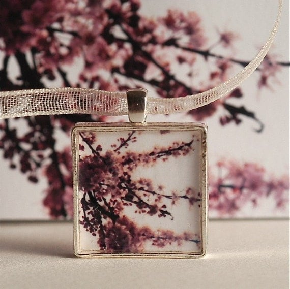 Cherry Blossoms.  A photograph pendant,  set in sterling silver.