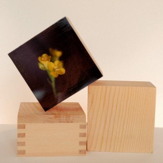 2 small wood blocks or boxes, mount your own art.
