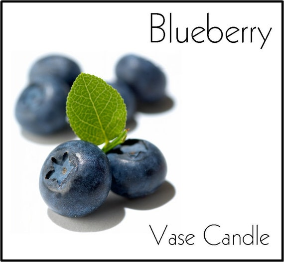Blueberry Candle Refill for Vase Candle