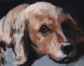Pet Art Print Dog Cocker Spaniel - Cocker Spaniel by David Lloyd