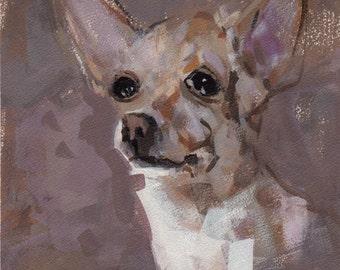 Dog Art Print Chihuahua 9x12 on 11x14 - Chihuahua by David Lloyd