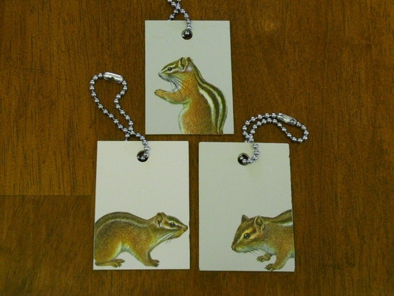 Chipmunk ID Tags for Luggage or Keys - Chipmunks - Recycled Laminate Sample Tiles
