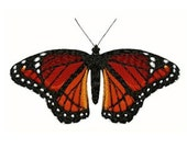 Butterfly Machine Embroidery Design, Money BACK GUARANTEE if you're not satisfied