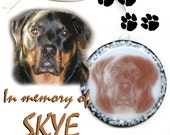 MAKE ME ONE Fused Glass Ornament...Customized With Image of Your Pet