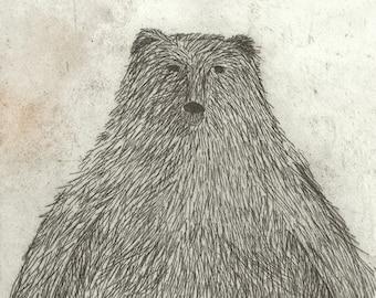 Black Bear - Signed Art Print