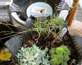 Recycled Tire Planter -Small -Second Harvest Food Bank donation