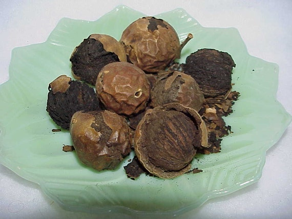 Natural Black Walnuts Plant Dye 1 ounce packet