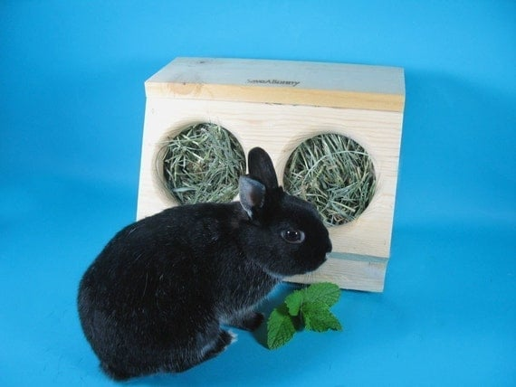 SaveABunny's Hay Saver- Double Hole Box
