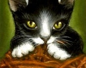 PLAYFUL KITTEN - art PRINT of oil pastel painting by Tanya Bond