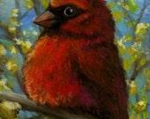 Cardinal - ACEO PRINT of an original painting by Tanya Bond