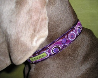 Synchronicity Collar in Purple Hues