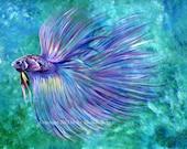 Violet Betta Fish, Art Print of Acrylic Painting