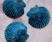 9 pcs. vintage turquoise blue marbled seashell cabochons 19x18mm - r144