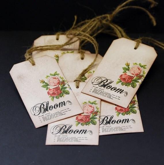 Roses In Bloom, vintage rose hang tags, set of 8