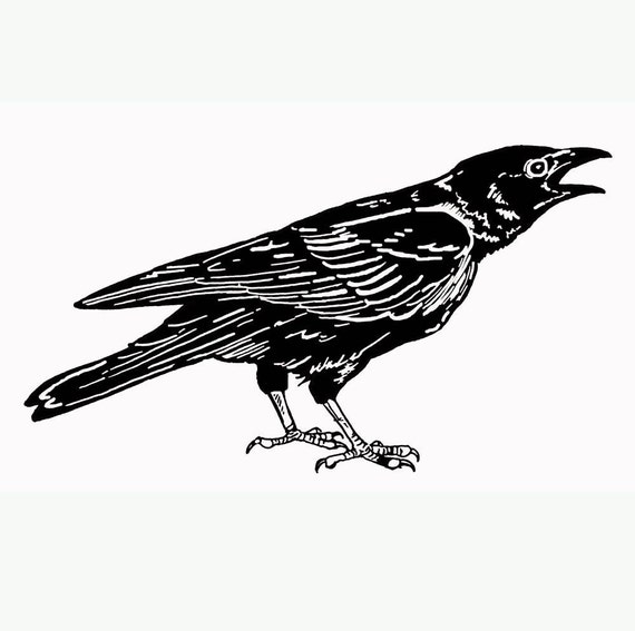 Wills Art Stamp- Crow 1 Large - Unmounted Red Rubber Stamp