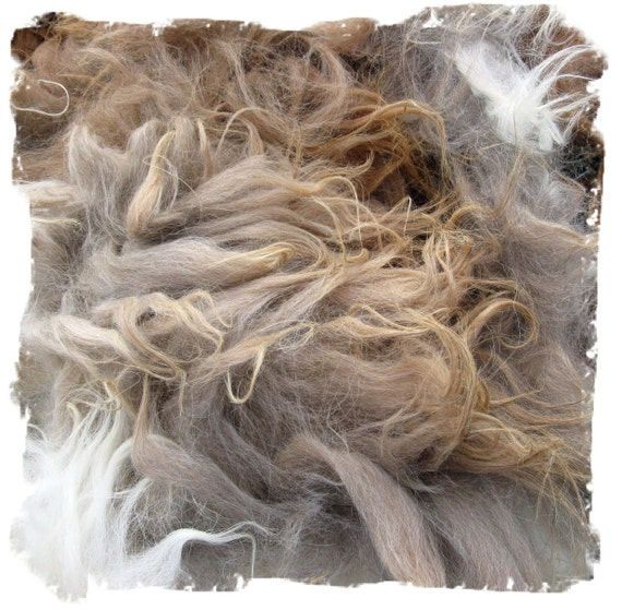 Mystery Fleece for Spinning and Doll Makers - 11 ounces