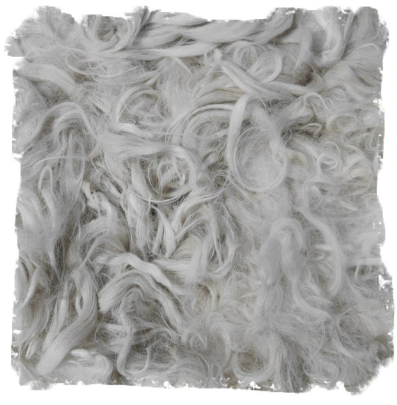 White Unwashed Suri Alpaca Fleece - For Spinning Felting and Doll Making - Fiyero - 4 ounces