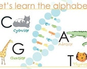 DNA for babies - let's learn the alphabet
