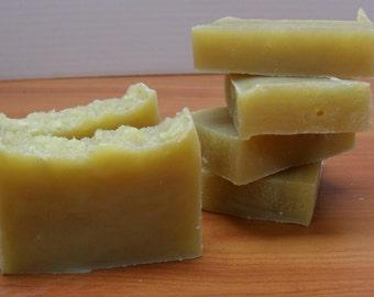 Unscented shampoo soap