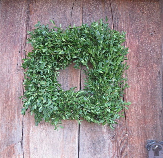 SQUARE BOXWOOD WREATH   fresh holiday greenery