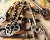 A Curious Antique Key Set / Instant Collection