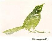 Little Green Bird transfer