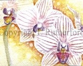 Orchid ACEO- LRutherford Original Miniature Watercolour 4