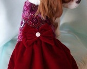 Red Velvet Dog Dress
