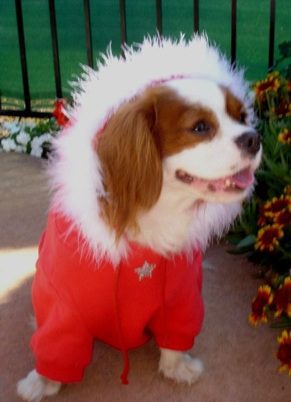 dog clothes Dog Hoodie Sweatshirt Red with  White Faux Fur Trim with Crystals