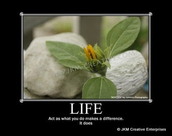 LIFE Motivational Poster 11 x 14