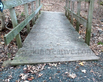 FOOT BRIDGE TWO Art Photo 8 x 10 Photograph Nature Wooden Foot Path