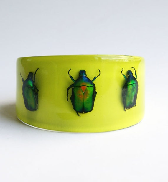 Lucite bracelet with real bugs