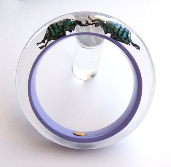 Lilac lucite bracelet with real insects