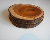 2 Yew coasters with bark