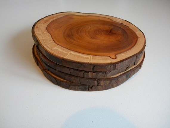 2 Yew coasters with bark