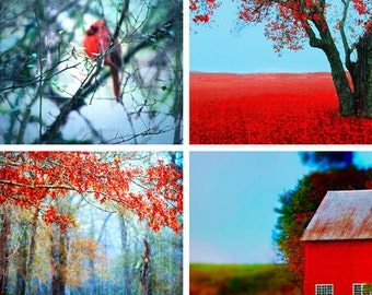 Red Decor, Red Landscape Photography, Fall Photos, Autumn Photography, Fairytale Photography, Forest, Woods, Red Barn, Cardinal, Gift Idea