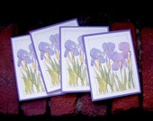 Cards - Iris set of 4, FREE US Shipping