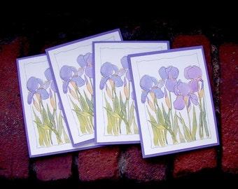 Cards - Iris set of 4, FREE US Shipping